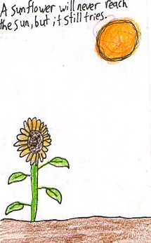 The Sunflower is trying